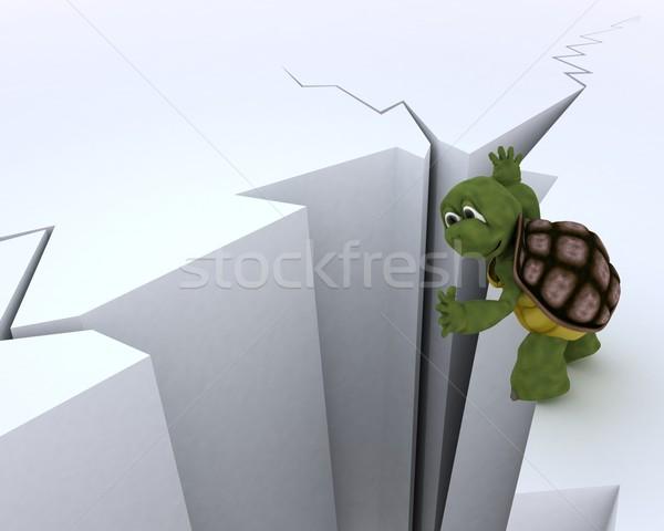 tortoise on a cliff edge Stock photo © kjpargeter