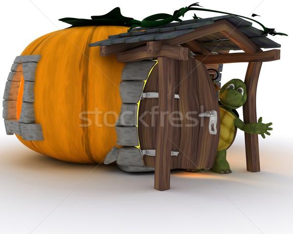 Tortoise in Halloween Pumpkin Cottage Stock photo © kjpargeter