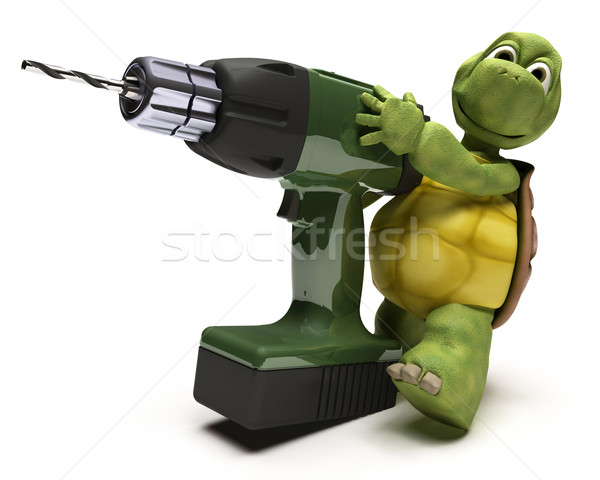 Tortoise with power drill Stock photo © kjpargeter