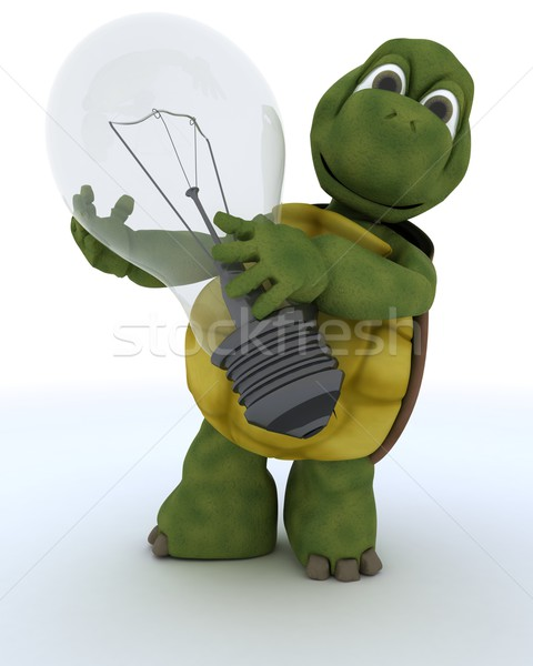 tortoise holding a light bulb Stock photo © kjpargeter