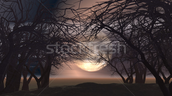3D spooky landscape with trees Stock photo © kjpargeter