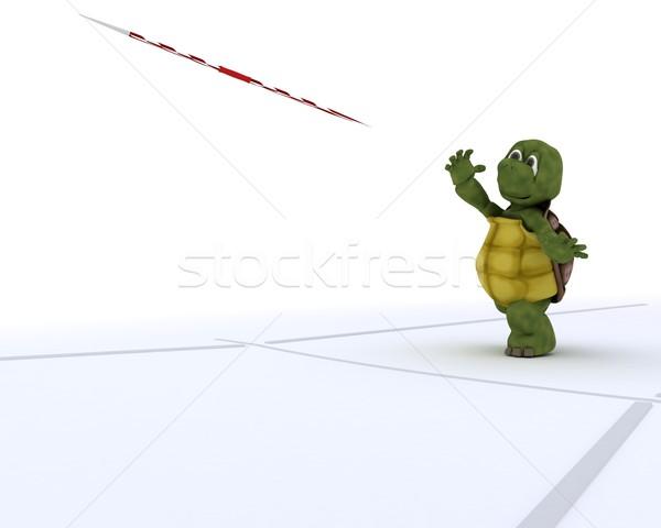 tortoise competing in javelin Stock photo © kjpargeter