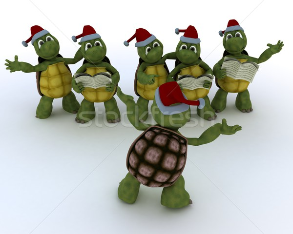 tortoises singing christmas carols Stock photo © kjpargeter