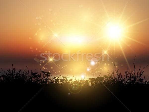 Naplemente füves tájkép sziluett égbolt Stock fotó © kjpargeter