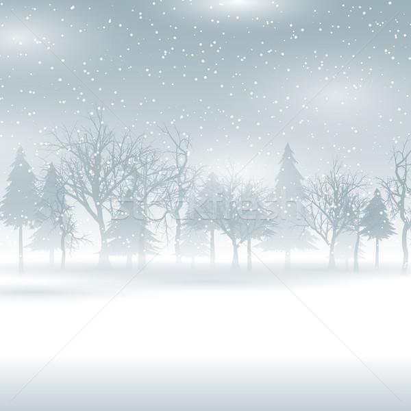 Snowy winter landscape Stock photo © kjpargeter