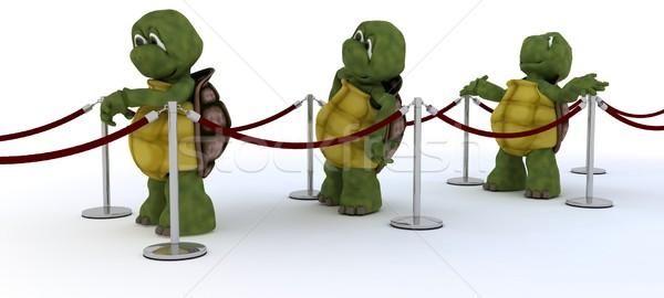 Vár vonal 3d render víz kagyló teknős Stock fotó © kjpargeter
