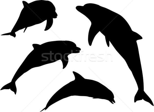 Não descrição saltar silhueta golfinho nadar Foto stock © kjpargeter
