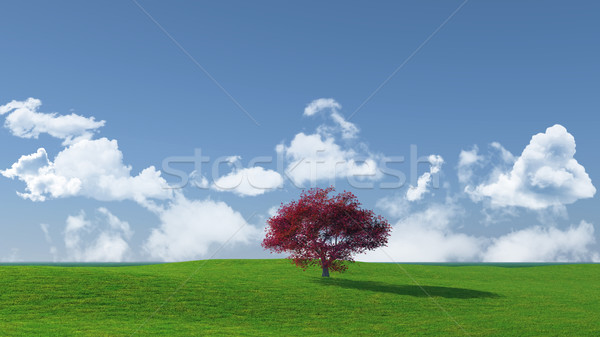 árvore paisagem 3d render bordo céu Foto stock © kjpargeter