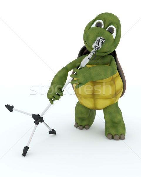 Teknősbéka énekel retro mikrofon 3d render víz Stock fotó © kjpargeter