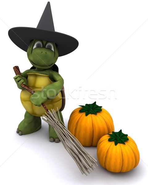 tortoise dressed as a witch for halloween Stock photo © kjpargeter
