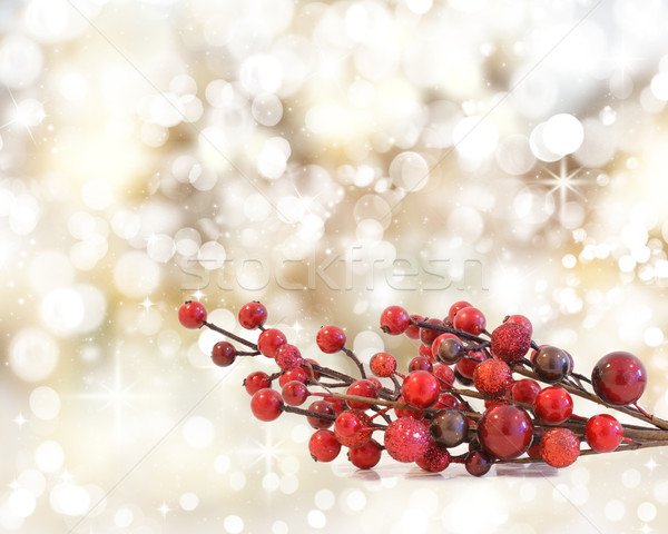 Christmas Berries Stock photo © kjpargeter
