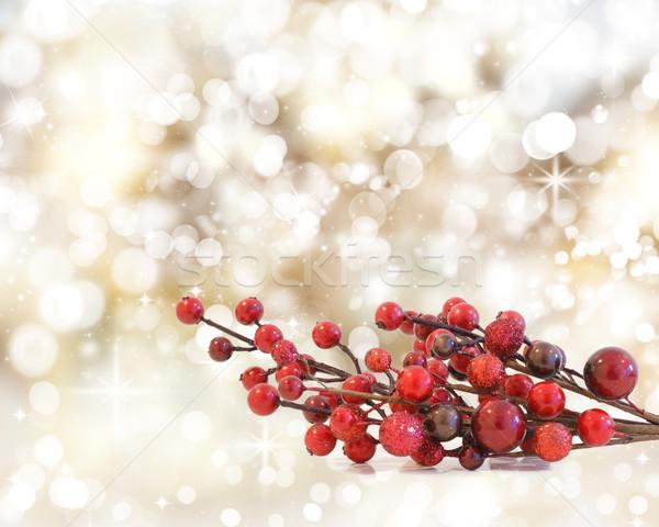 Navidad bayas bokeh luces estrellas estrellas Foto stock © kjpargeter