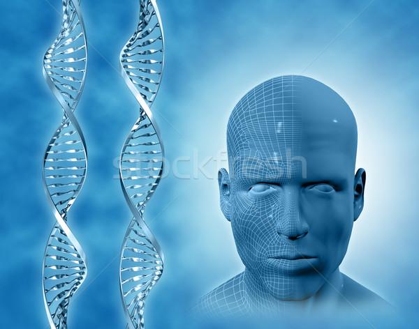 3D медицинской ДНК мужчины лице человека Сток-фото © kjpargeter