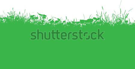 Füves tájkép sziluett fű naplemente természet Stock fotó © kjpargeter