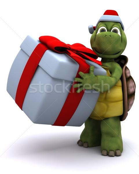 Tortoise santa character Stock photo © kjpargeter