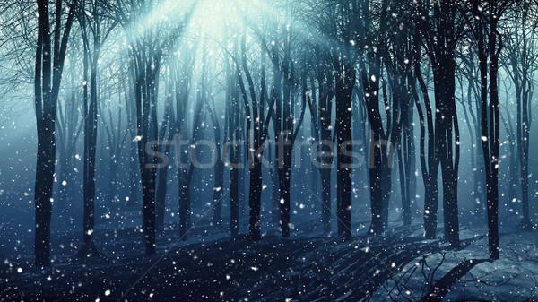 Ağaçlar gün 3D orman güneş Stok fotoğraf © kjpargeter