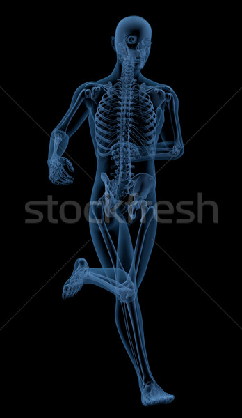 Running skeleton Stock photo © kjpargeter