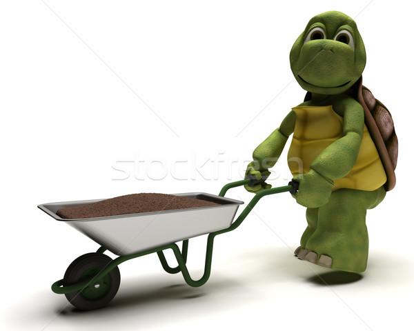 Teknősbéka kertész kerék hordoz föld 3d render Stock fotó © kjpargeter