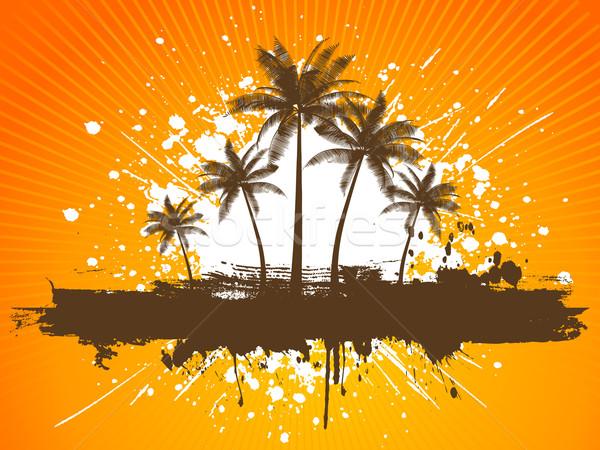 Grunge palmbomen voorjaar natuur blad achtergrond Stockfoto © kjpargeter