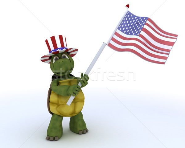 tortoise with american flag Stock photo © kjpargeter