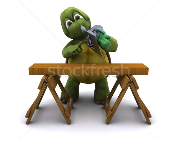 Tortoise with a power saw Stock photo © kjpargeter
