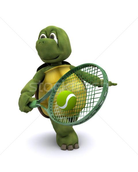 Teknősbéka játszik tenisz 3d render sport óceán Stock fotó © kjpargeter