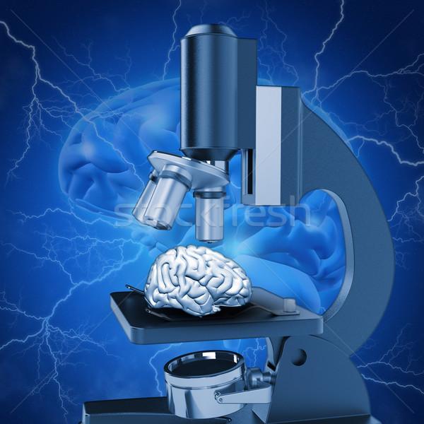 3D medycznych obraz badań mózgu Zdjęcia stock © kjpargeter