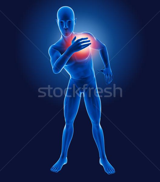 Сток-фото: 3D · медицинской · человека · груди · более · интерьер
