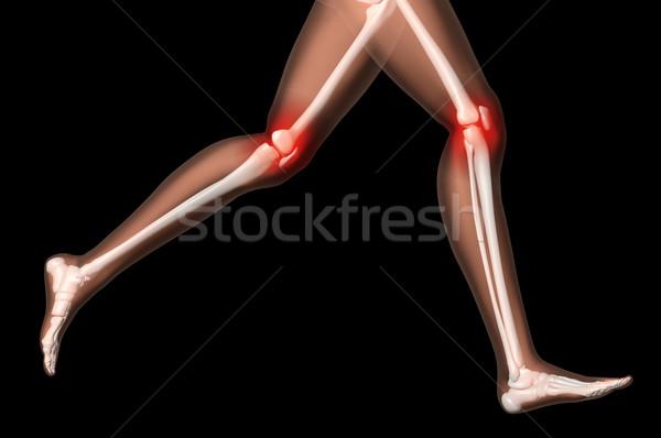 Stock fotó: Női · orvosi · csontváz · lábak · fut · póz