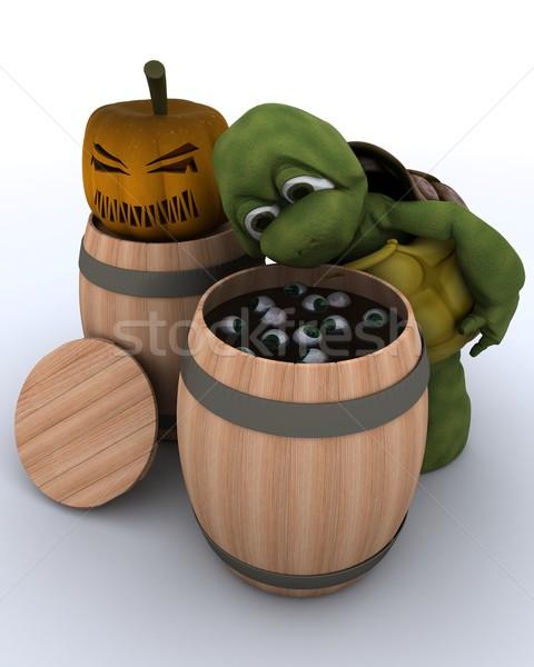 tortoise bobbing for eyeballs in a barrel Stock photo © kjpargeter