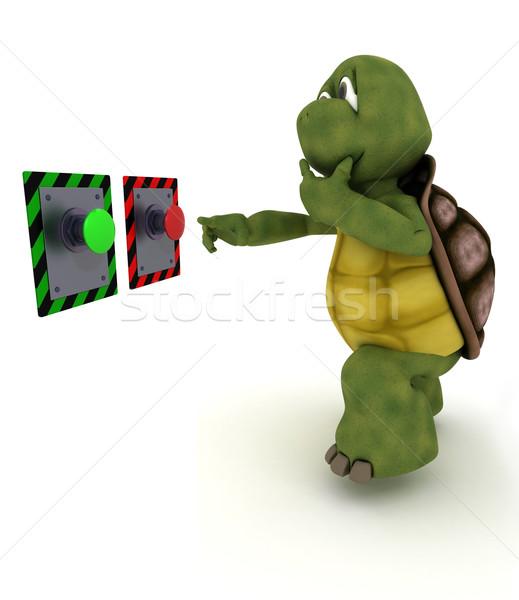 черепаха кнопки 3d визуализации воды оболочки Сток-фото © kjpargeter