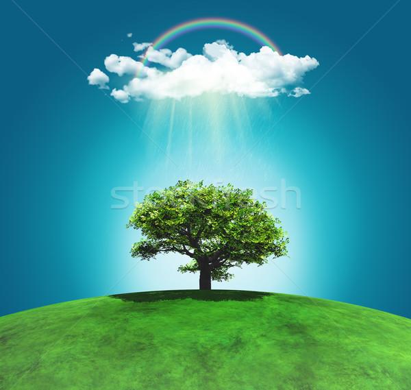 Rendu 3d herbeux paysage arbre Rainbow nuages Photo stock © kjpargeter