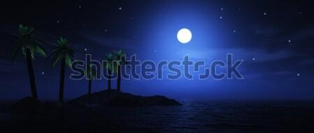 Moonlit palm tree island Stock photo © kjpargeter