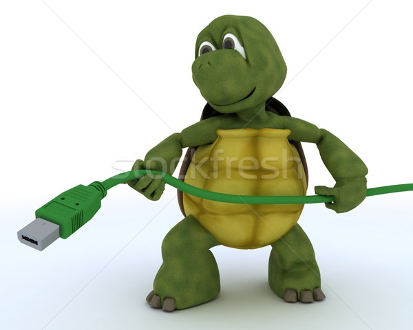 Tortoise with a firewire cable Stock photo © kjpargeter