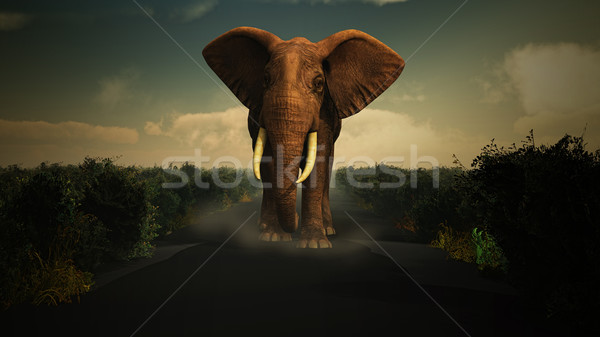 3D elephant walking towards camera Stock photo © kjpargeter