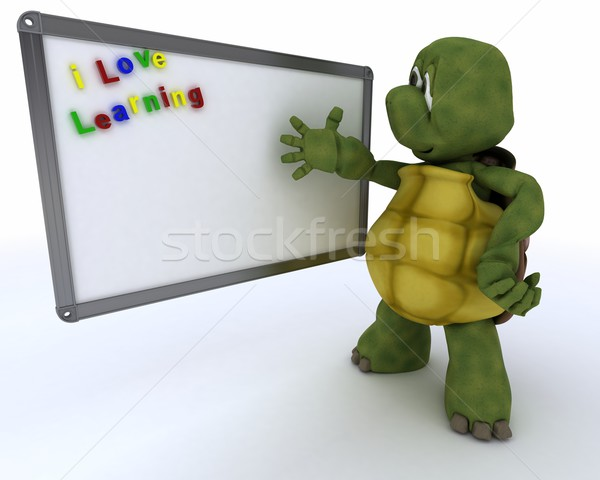 tortoise with White class room drywipe marker board Stock photo © kjpargeter