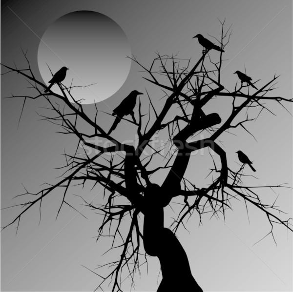 Scary drzewo charakter jesienią sylwetka linii Zdjęcia stock © kjpargeter