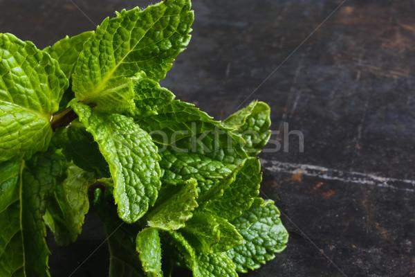 Fraîches menthe sombre grunge métal vert Photo stock © kkolosov