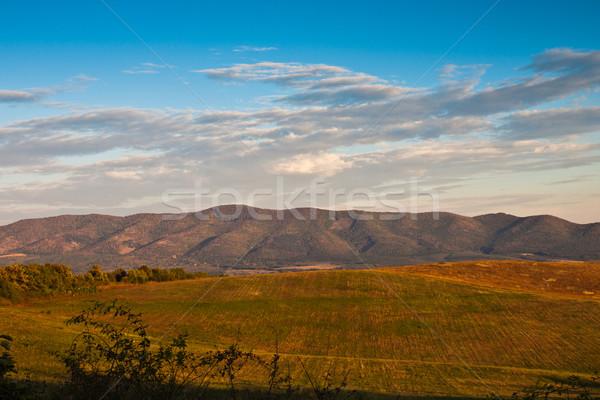 Montana campo árbol paisaje relajarse amanecer Foto stock © klagyivik
