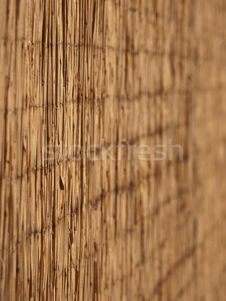 reed background Stock photo © klagyivik