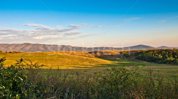 Berg veld voorjaar zonsondergang natuur ontspannen Stockfoto © klagyivik