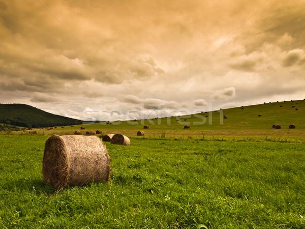 поле солома стога горы горизонт загрузить