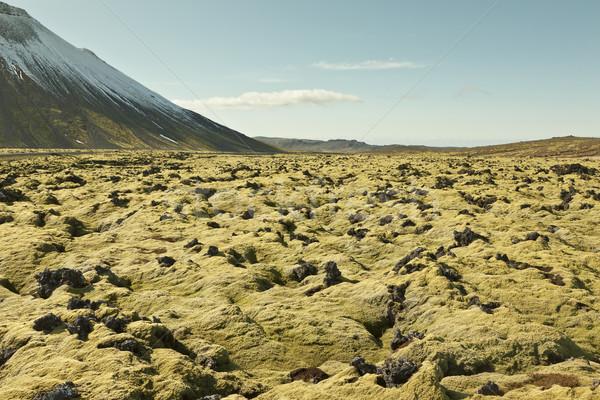 Landschap oude lava veld IJsland gedekt Stockfoto © klikk