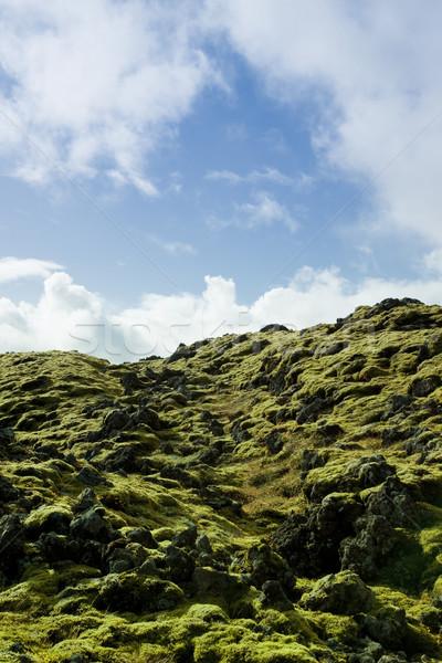 Icelandic landscape Stock photo © klikk