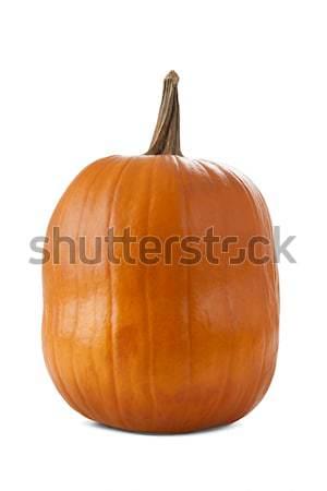 Pumpkin isolated on white Stock photo © klikk