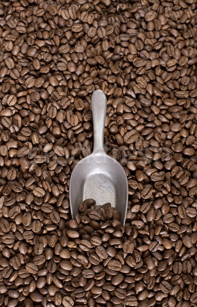 Coffee beans background Stock photo © klikk