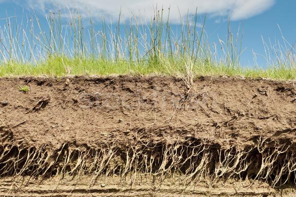 Earth soil cross section stock photo jon ari helgason for Earth soil layers