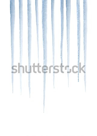 Real icicles isolated on white Stock photo © klikk