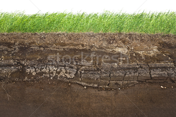 Grass and soil layers isolated on white Stock photo © klikk