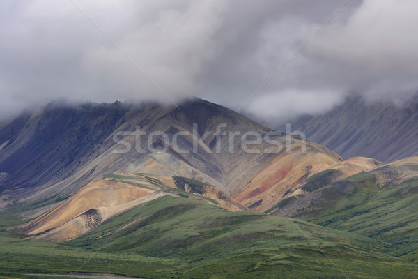 Többszörös nyár színek dombok Alaszka eső Stock fotó © Klodien